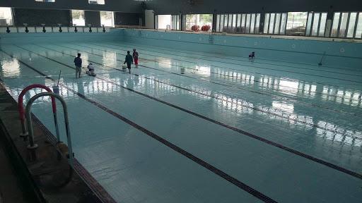 dọn dẹp bể bơi