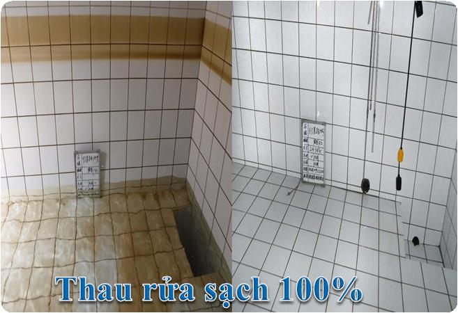 vệ sinh bể nước bởi HomeCare